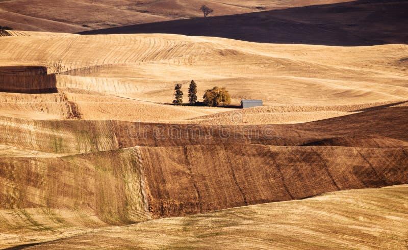 Palouse dolina w spadku obrazy stock