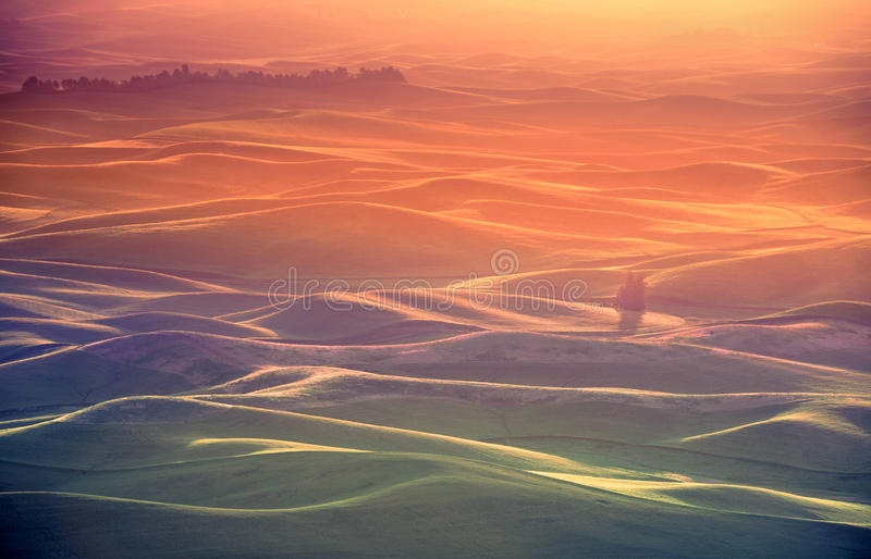 Palouse Glow. Spectacular golden sunrise at Palouse hills. From Steptoe Butte state park, Washington royalty free stock photography