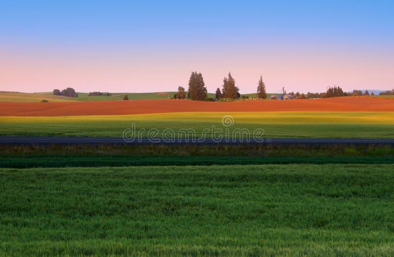 Palouse landskap arkivfoton