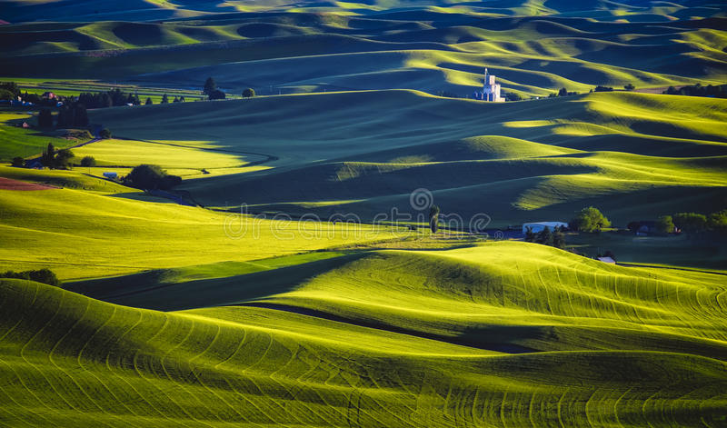 Palouse Sunset, Washington. The golden hour of sunset on the rolling hills of the farmlands in the Palouse, an important agricultural area in southeast stock images