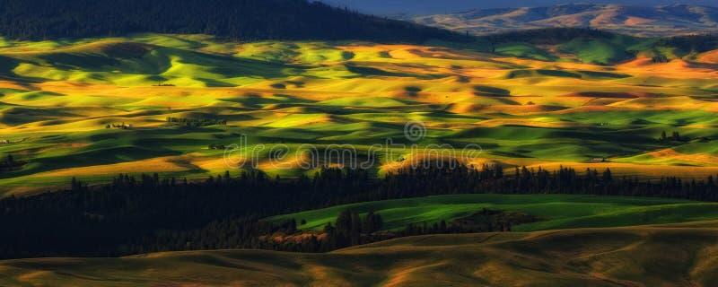 Palouse, Washington State stock photo