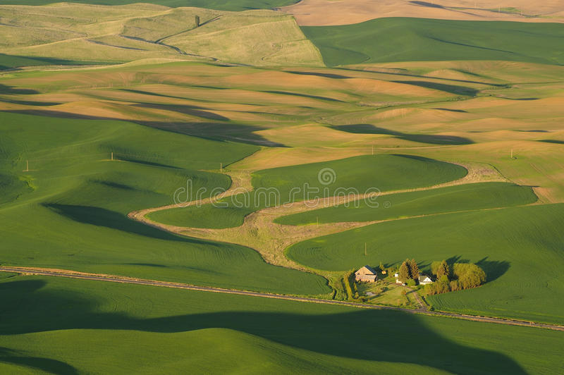 Palouse wheat fields at sunset stock images