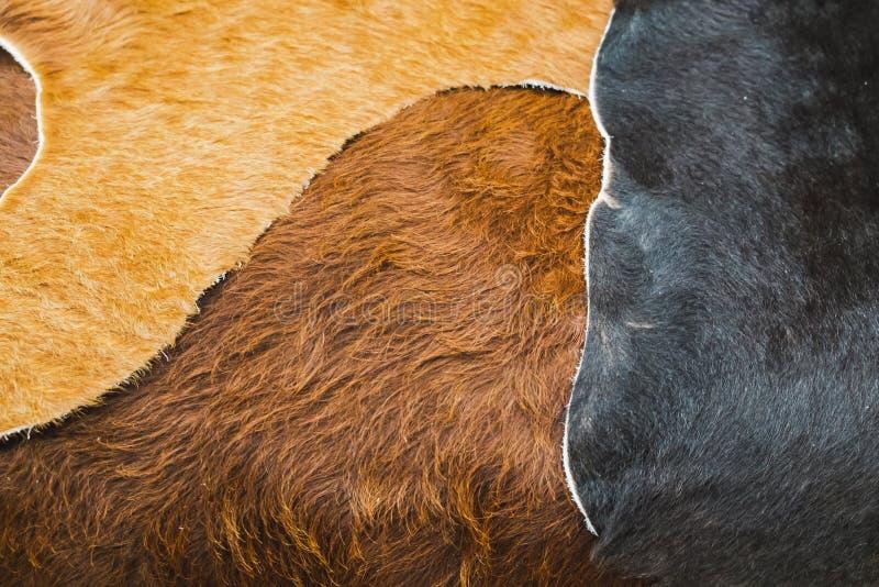 Palowa brown i czarna dywanik krowy skóra fotografia stock