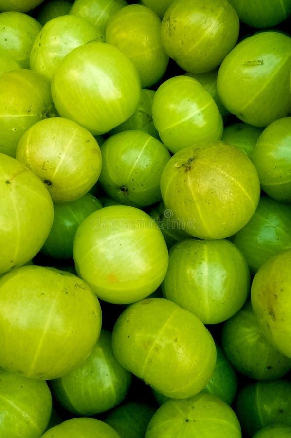 Palowe amla zieleni owoc fotografia royalty free
