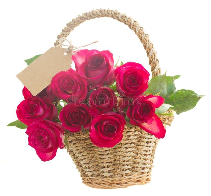 palowe różowe róże zdjęcie stock