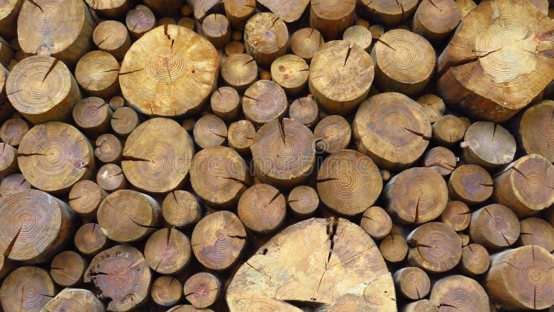 Palowy drewna cięcie Składa łupkę zdjęcia royalty free