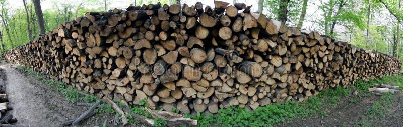 palowy drewno obraz stock