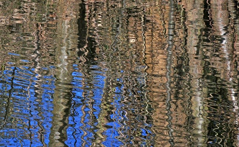 Paludi, canali e laghi nella foresta di inverno immagine stock