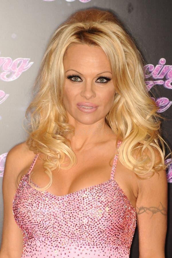 Pamela Anderson royaltyfri bild