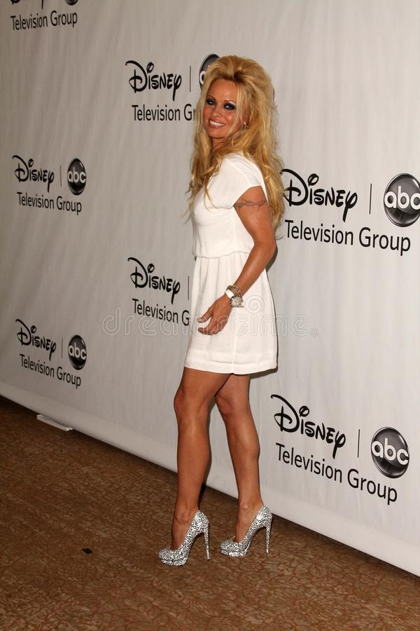 Pamela Anderson royaltyfri foto