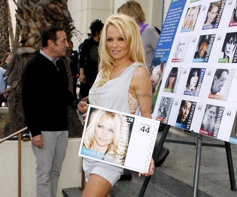 Pamela Anderson photographie stock