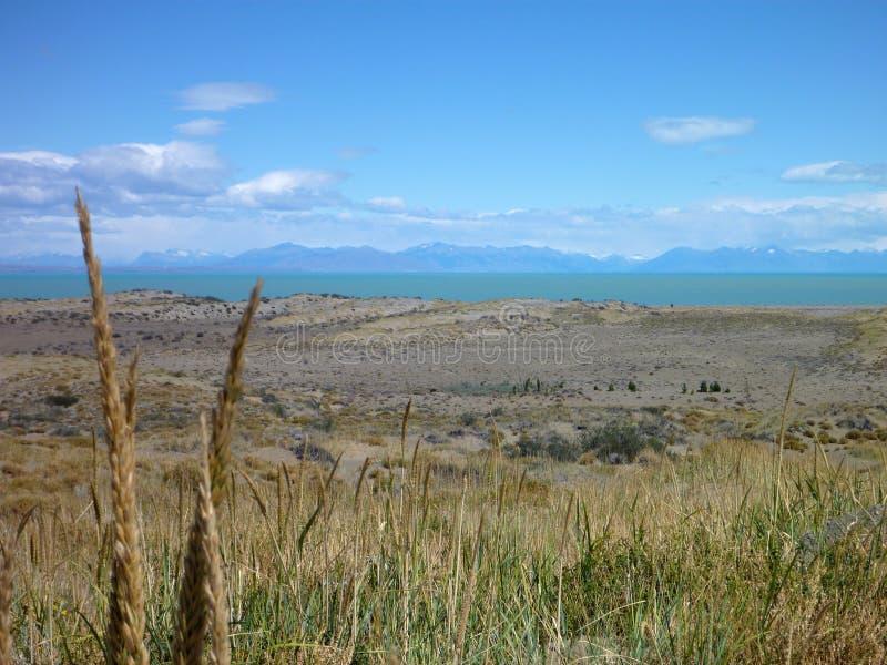 Pampa herbeuse large dans le patagonia argentin image libre de droits