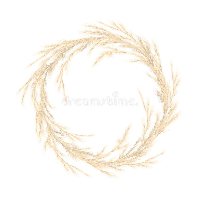 Pampas grass golden wreath. Vector illustration. panicle Cortaderia selloana South America. festive decoration template. Feathery grass head plumes, for Floral royalty free stock photography