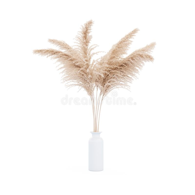 Free Pampas Grass White Vase Royalty Free Stock Images - 183173159