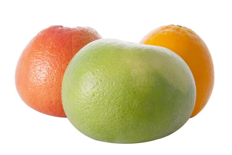 Pampelmuse, Orange und Sweetie lizenzfreies stockbild
