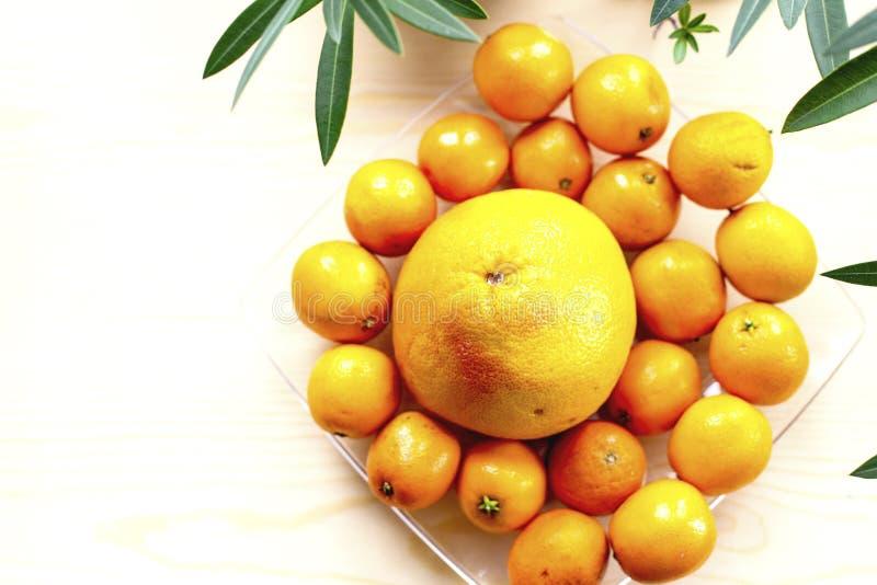 Pampelmuse und Tangerinen auf einer Glasplatte stockfoto