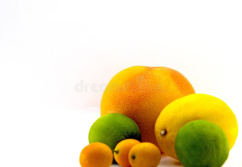 Pampelmuse, Zitrone, Kalk, japanische Orange lizenzfreies stockbild