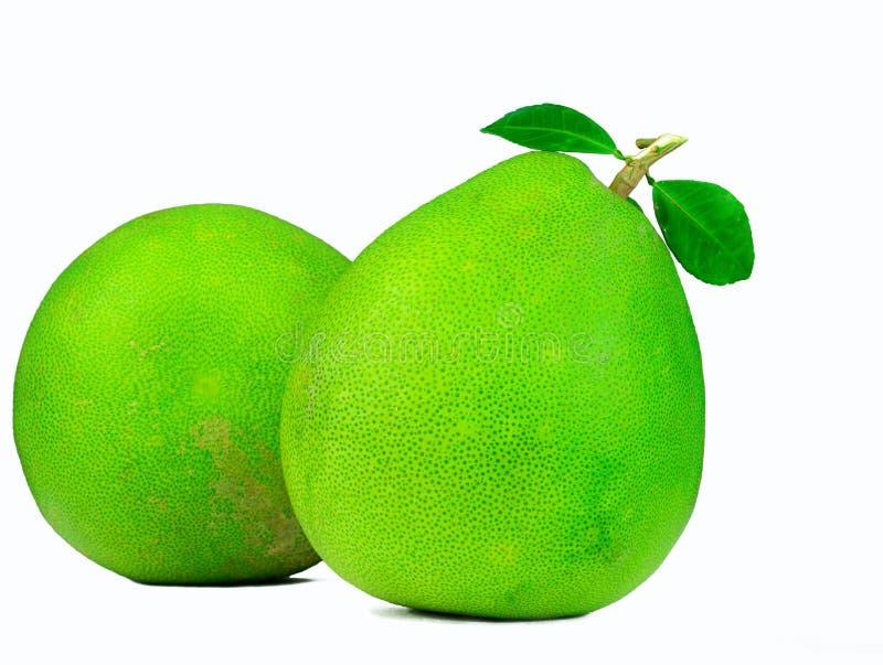 Pampelmuse zwei mit den Blättern lokalisiert auf weißem Hintergrund Tropische Frucht Natürliche Quelle des Vitamins C und des Kal stockfotografie