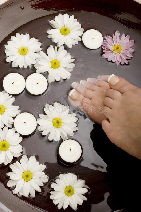 Download Pampered feet stock image. Image of healthy, gerbera, pampering - 3313461