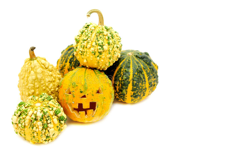 Pampkin Stock Images