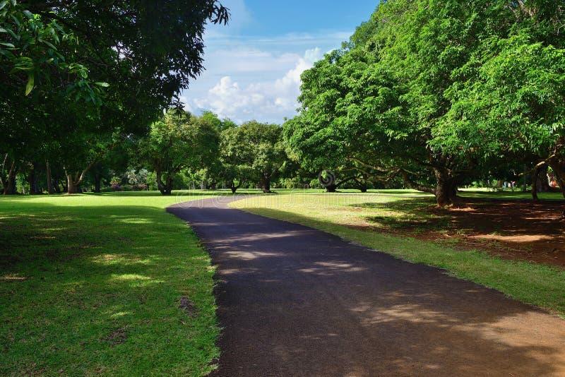 Pamplemousess botanische Tuinen in Mauritius stock foto's
