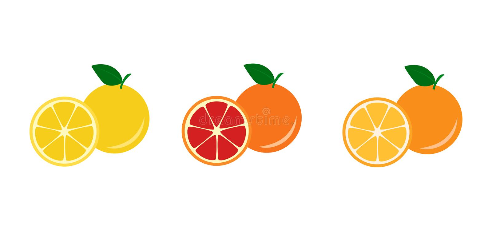 Pamplemousse et orange jaunes et rouges illustration stock