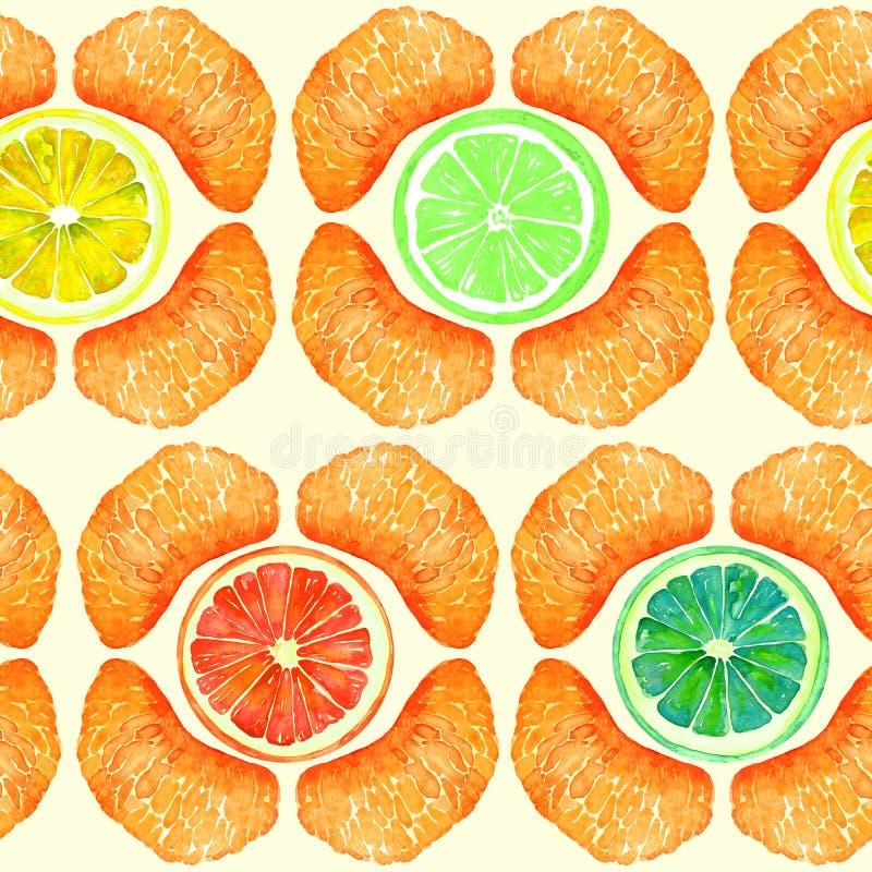 Pamplemousse, orange, chaux et citron, sections de mandarine, tranches en forme géométrique, conception sans couture de modèle su illustration libre de droits