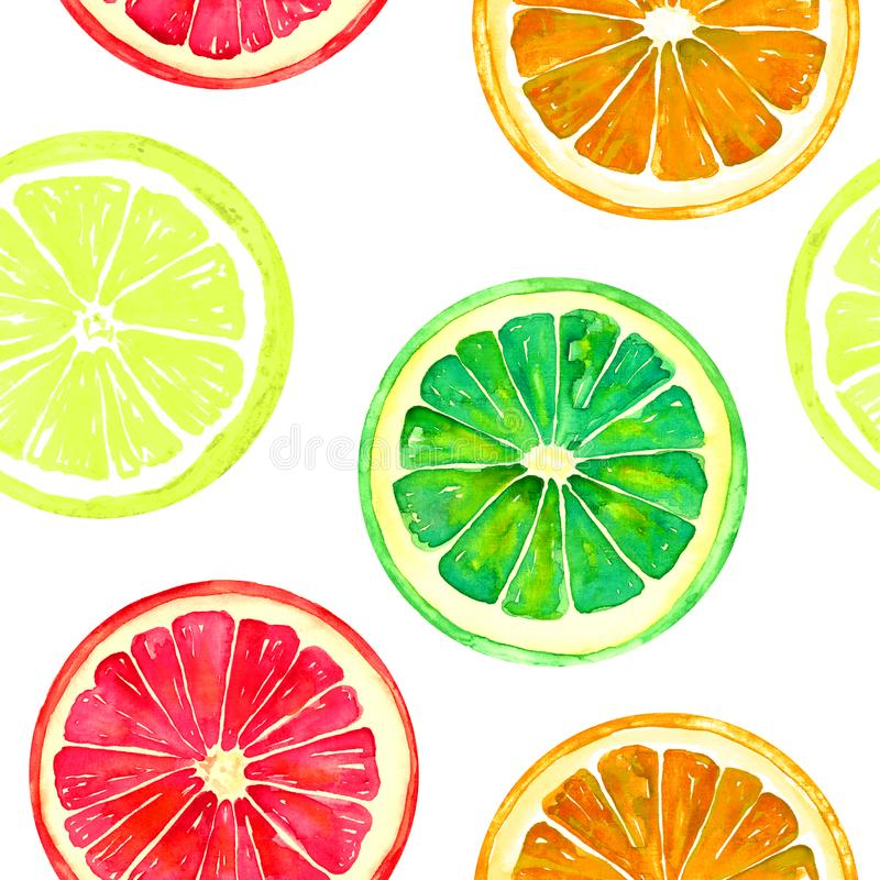 Pamplemousse, orange, chaux et citron sur le fond blanc illustration stock