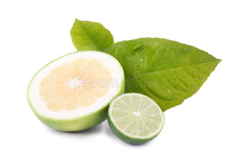 Pamplumossa e limão doces imagens de stock