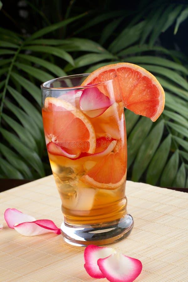 Pamplumossa - Rosa congelou o chá imagem de stock