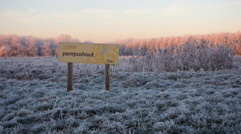 Pampushout Almere Κάτω Χώρες που καλύπτονται στον hoar-παγετό, Pampushout στοκ εικόνα με δικαίωμα ελεύθερης χρήσης
