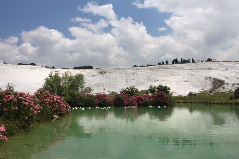 Pamukkale в Турции стоковые изображения rf