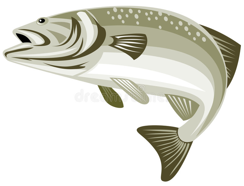 pan bass ilustracji