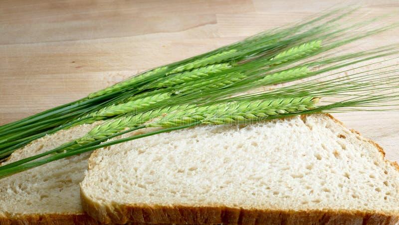 Pan blanco con la cebada de la cosecha en fondo de madera fotografía de archivo