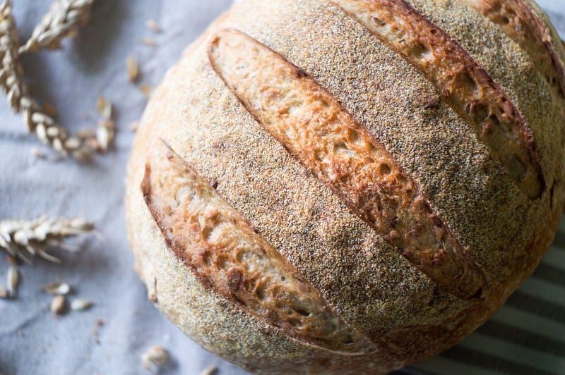 Pan de pan amargo del trigo integral y oídos del trigo en una k imagen de archivo libre de regalías