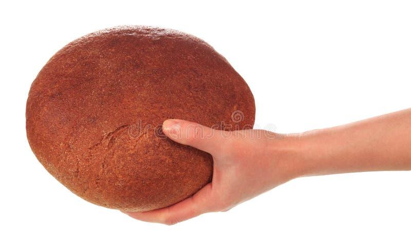 Pan de centeno redondo en mano femenina en el fondo blanco fotografía de archivo libre de regalías