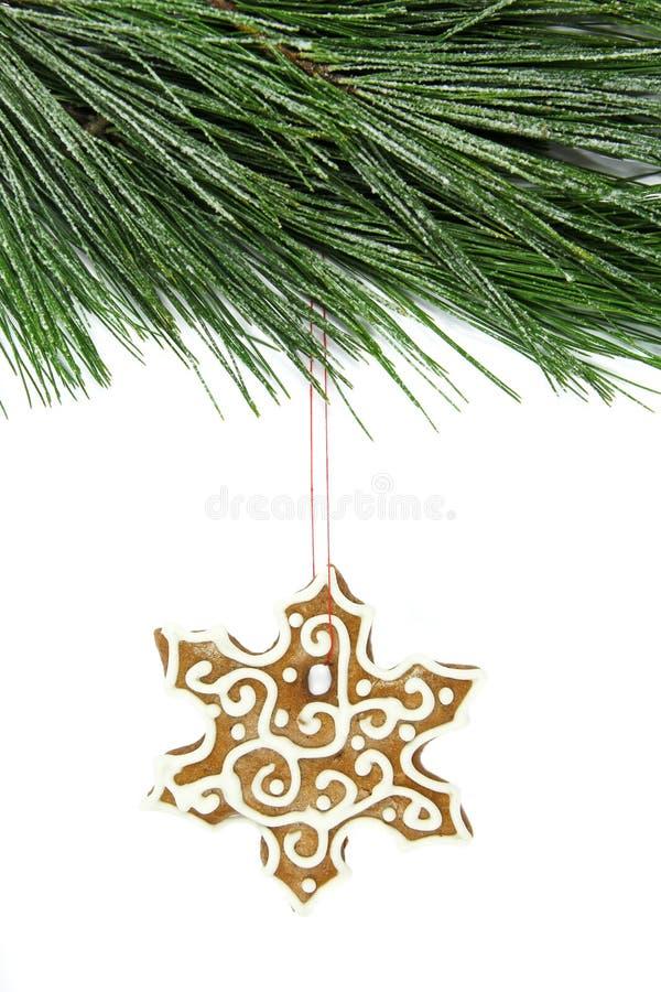 Pan de jengibre del copo de nieve de la Navidad y árbol de abeto en blanco fotografía de archivo libre de regalías