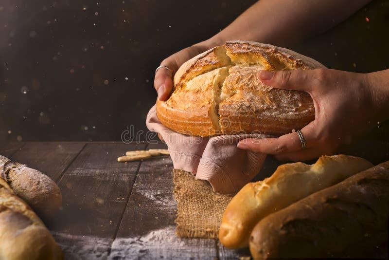 Pan del pan cocido fresco del trigo en manos del ` s de la mujer en sol Luz rústica del día en sitio oscuro fotos de archivo