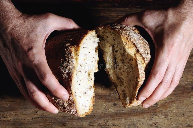 Pan del pan foto de archivo libre de regalías