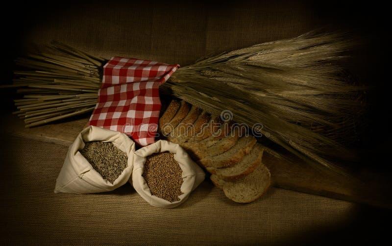 Pan del trigo foto de archivo