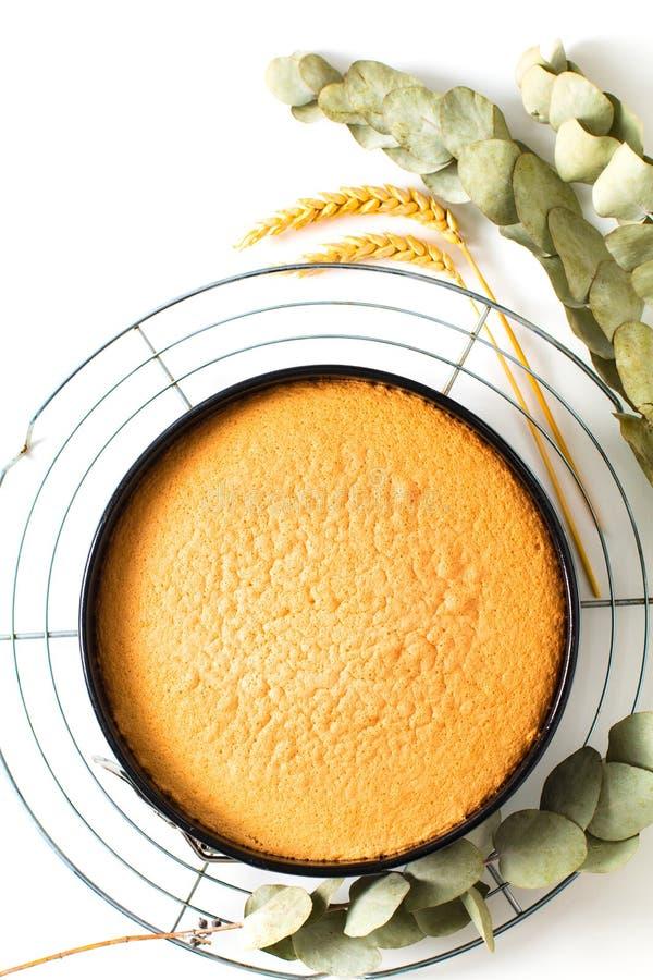 Pan di Spagna casalingo al forno fresco bollente di concetto dell'alimento in stampo per dolci su fondo bianco con lo spazio dell fotografie stock libere da diritti
