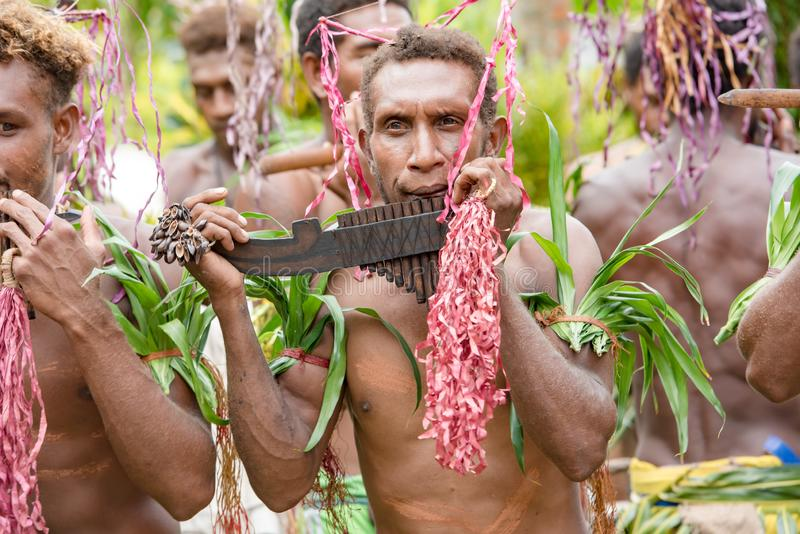 Pan flute player Solomon Island, South Pacific Ocean royalty free stock image
