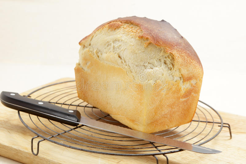Pan hecho en casa que se refresca en un estante fotos de archivo