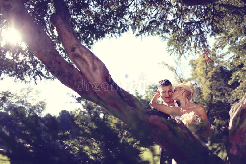 Download Pan Młody Obejmowania Panny Młodej Zdjęcie Stock - Obraz złożonej z dziewczyna, atrakcyjny: 57659942