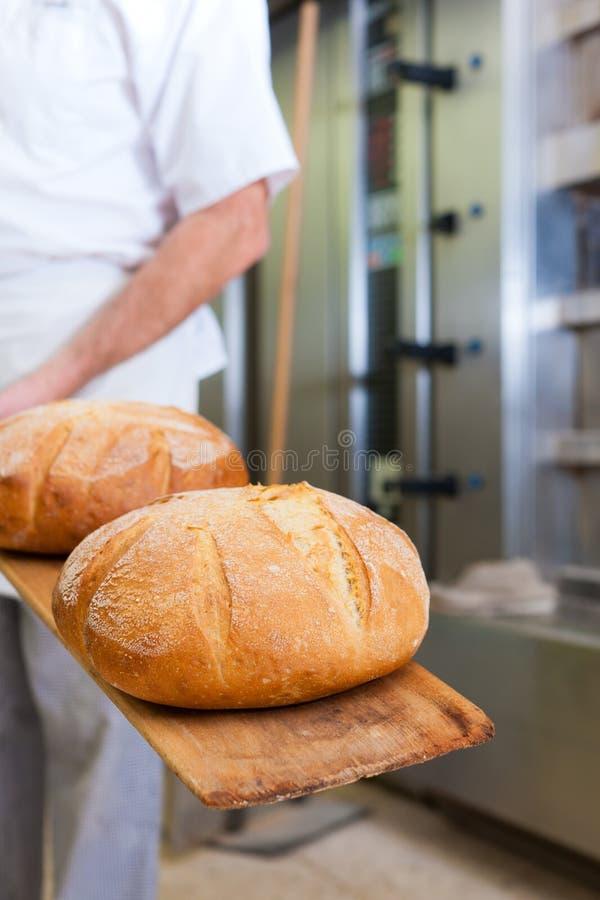 Pan masculino de la hornada del panadero imagenes de archivo