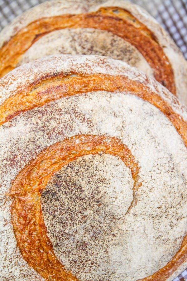 Pan recientemente cocido al horno imagenes de archivo