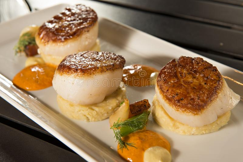 Pan Seared Diver Scallops royalty-vrije stock foto's