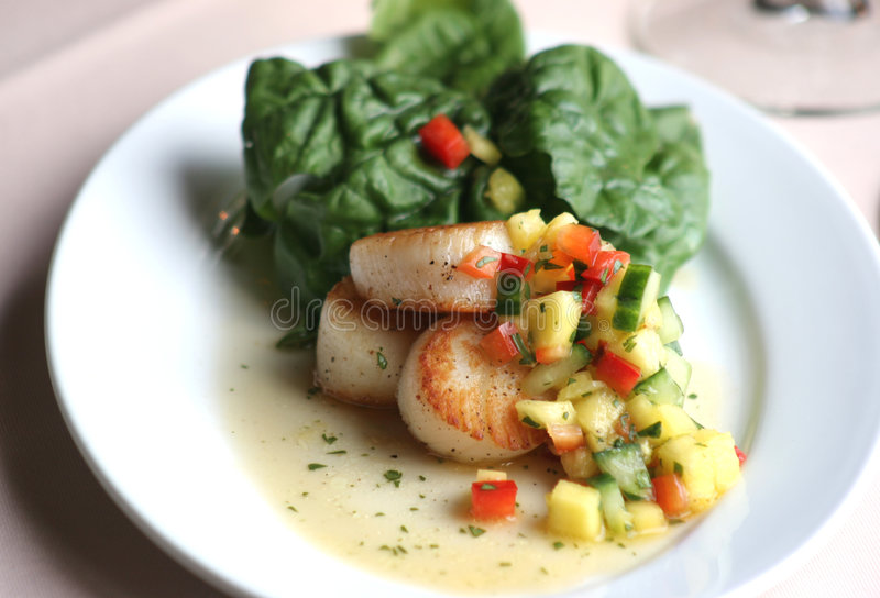Download Pan Seared Scallops stock image. Image of spinach, sauce - 616313
