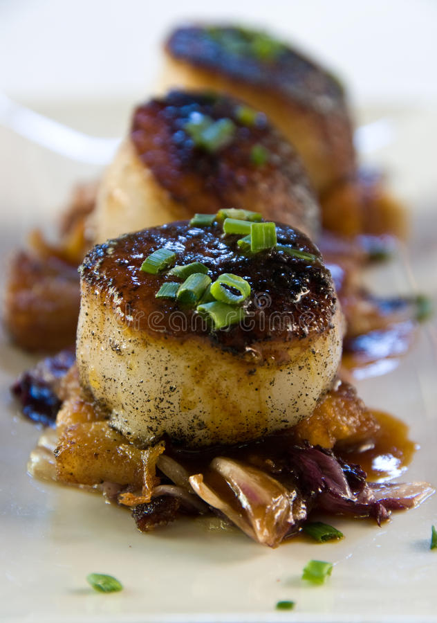 Pan seared scallops over pork belly royalty free stock photography