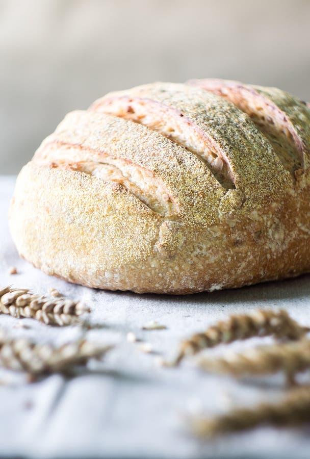 Pan y trigo frescos del artesano del pan amargo foto de archivo